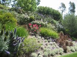 Как создать красивый сад на склоне?